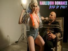 Harlequin Romance Bird Of Prey -(Lacy Lennon)